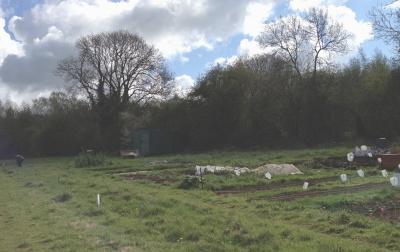 Filnore Allotments